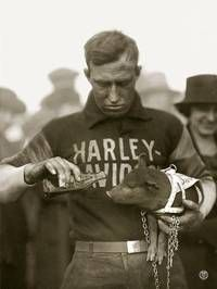 """In 1920 a pig mascot was offered a drink from a soda bottle at the Marion, IN races. When a member of the """"Wrecking Crew"""" race team won, they took their mascot, a pig, around the track for a victory lap—leading to the nickname of the """"Harley Hogs"""". That name has lasted as a slang term for Harley-Davidson motorcycles."""