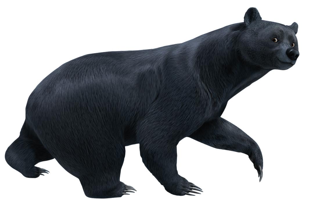 brave movie demon bear - photo #36