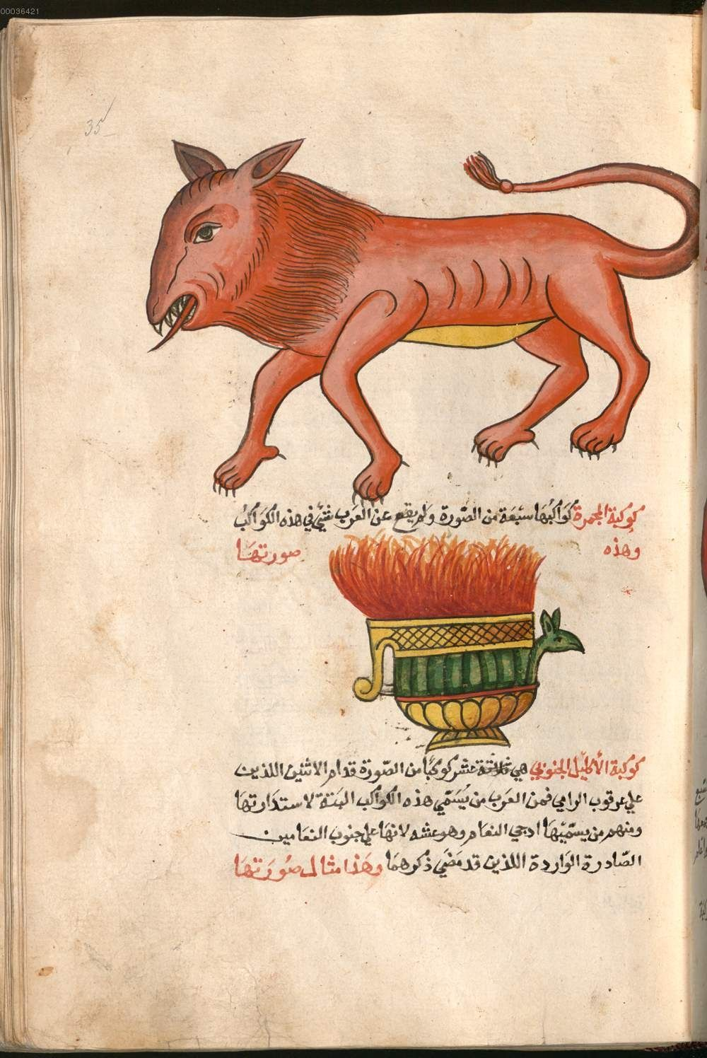 Qazwīnī, Zakarīyā Ibn-Muhammad al-: Kitāb ʿAǧāʾib al-ma̮hlūqāt wa-ġarāʾib al-mauǧūdāt - BSB Cod.arab. 463, Palestine?, 1750-1770 [BSB-Hss Cod.arab. 463]