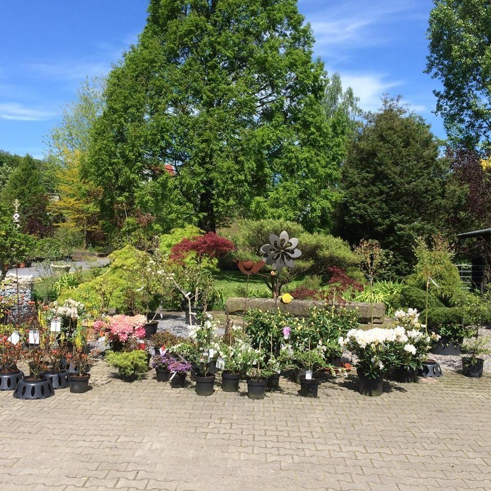 15 Gartengestaltung Bick Gartengestaltung Garten Landschaftsbau Garten