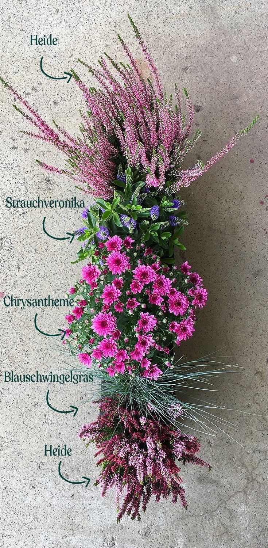 Die einfachste Balkonbepflanzung der Welt