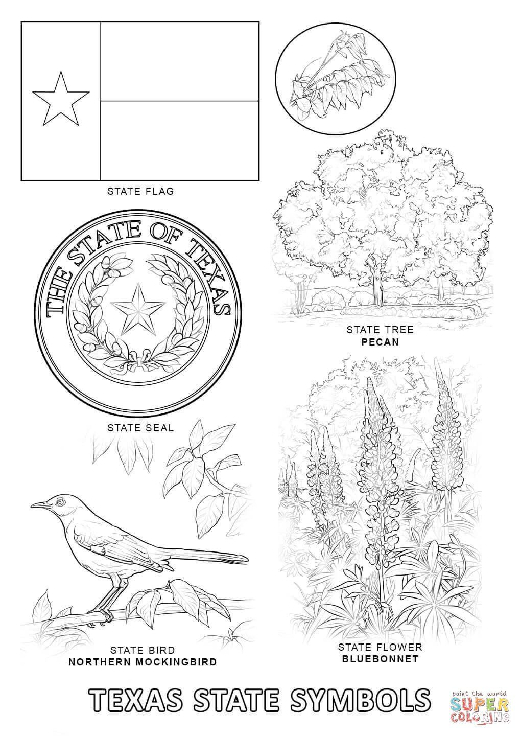 World Flags Coloring Pages Texas State Symbols Coloring Page In 2020 Flag Coloring Pages Flower Coloring Pages Bird Coloring Pages