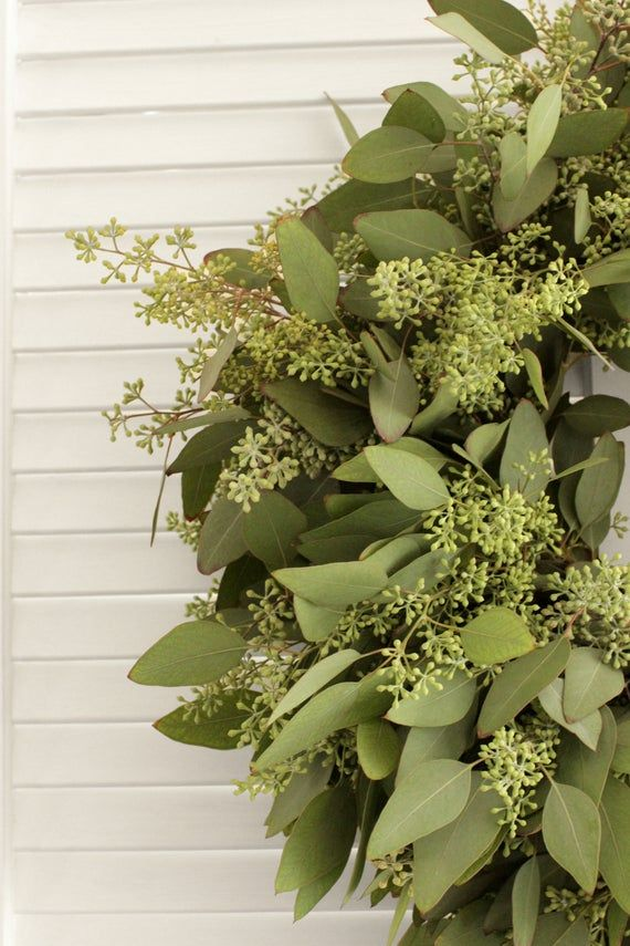 Photo of Fresh Handmade Wreath – Seeded Eucalyptus Wreath – for Front Door, Wall, Window, Home Décor (Free Shipping) – various sizes available