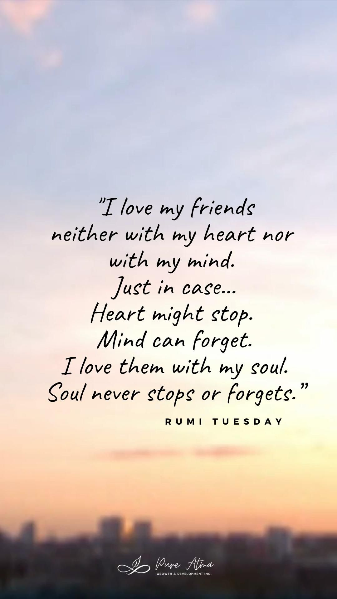 Beautiful Rumi Quote About Friendship