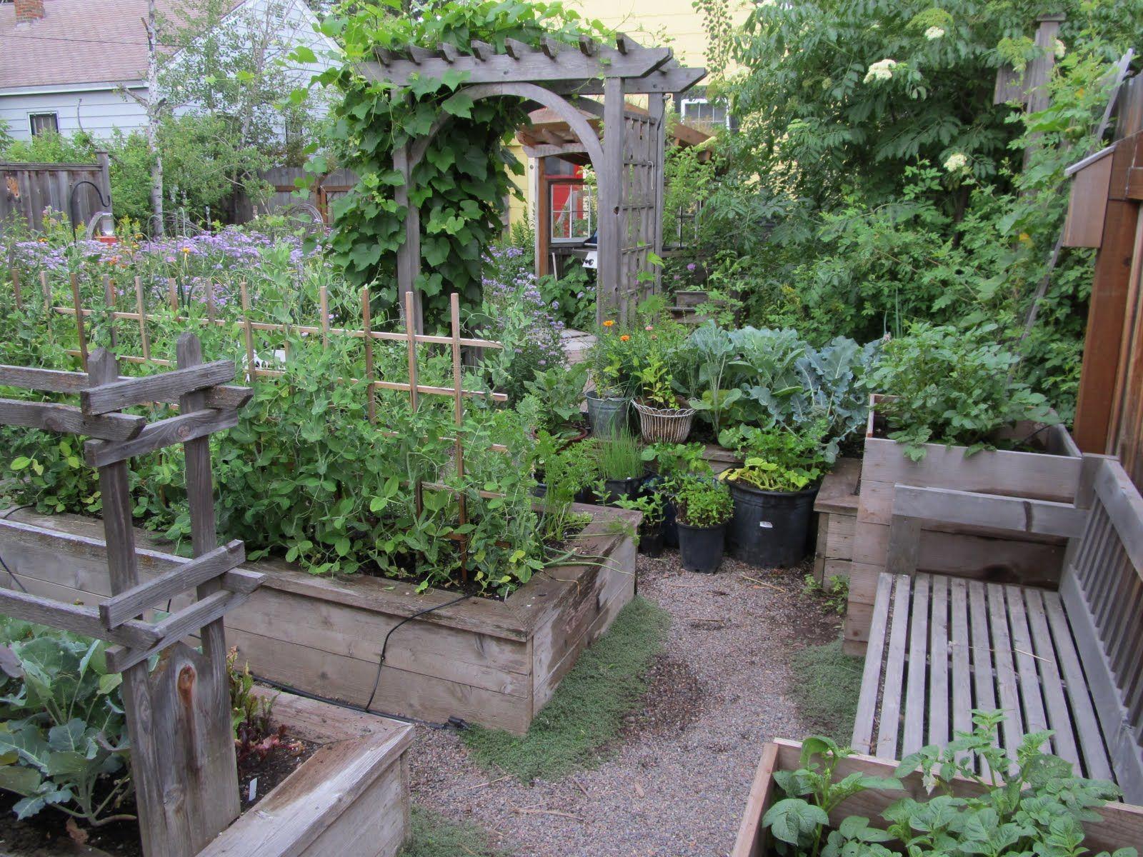 Scenes From The Garden Mid July Raised Vegetable Garden Plans