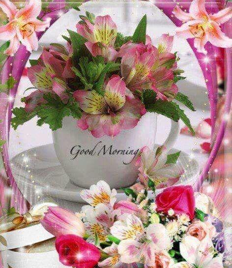 .. ♥ Good Morning
