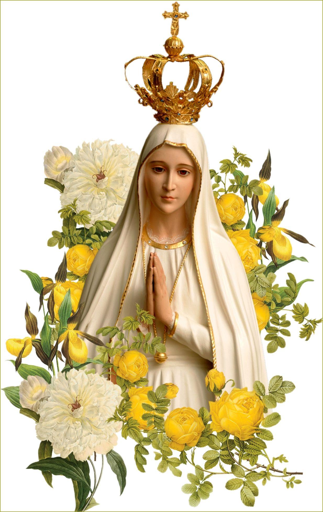 priesthood4fatima.jpg (1234×1955) Lady of fatima