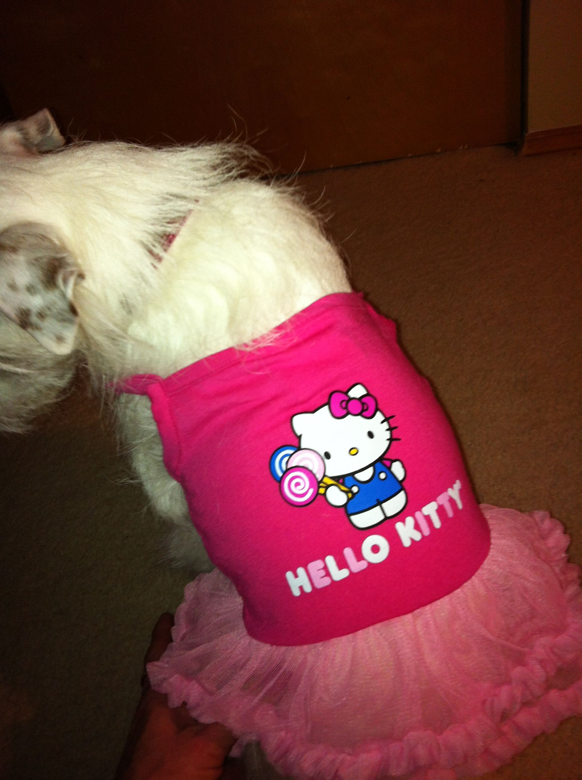 Maggie's Hello Kitty spring outfit