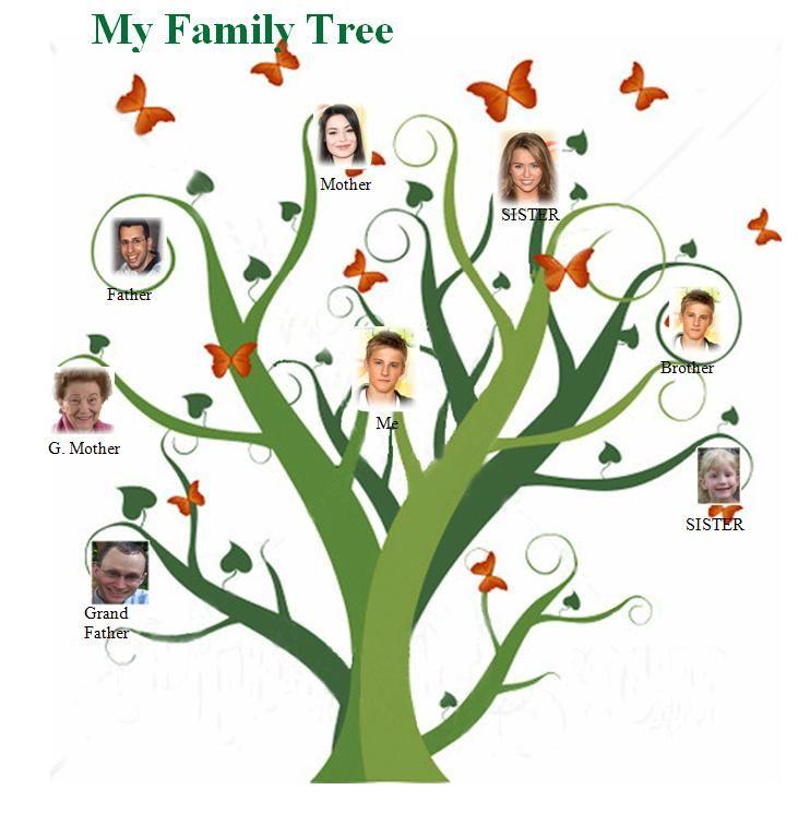 Free Family Tree Templateg 731746 Free Family Tree Template