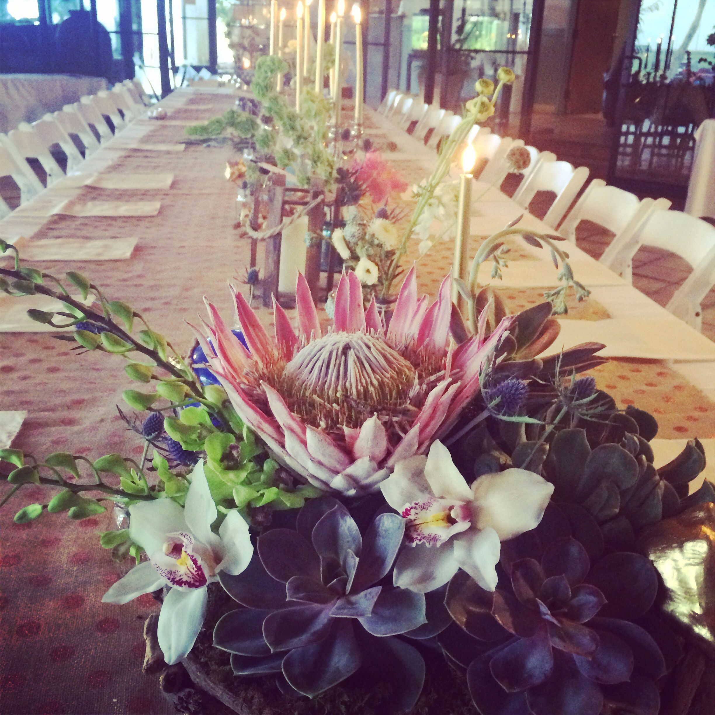 King protea and succulent centerpiece in a driftwood for King protea flower arrangements