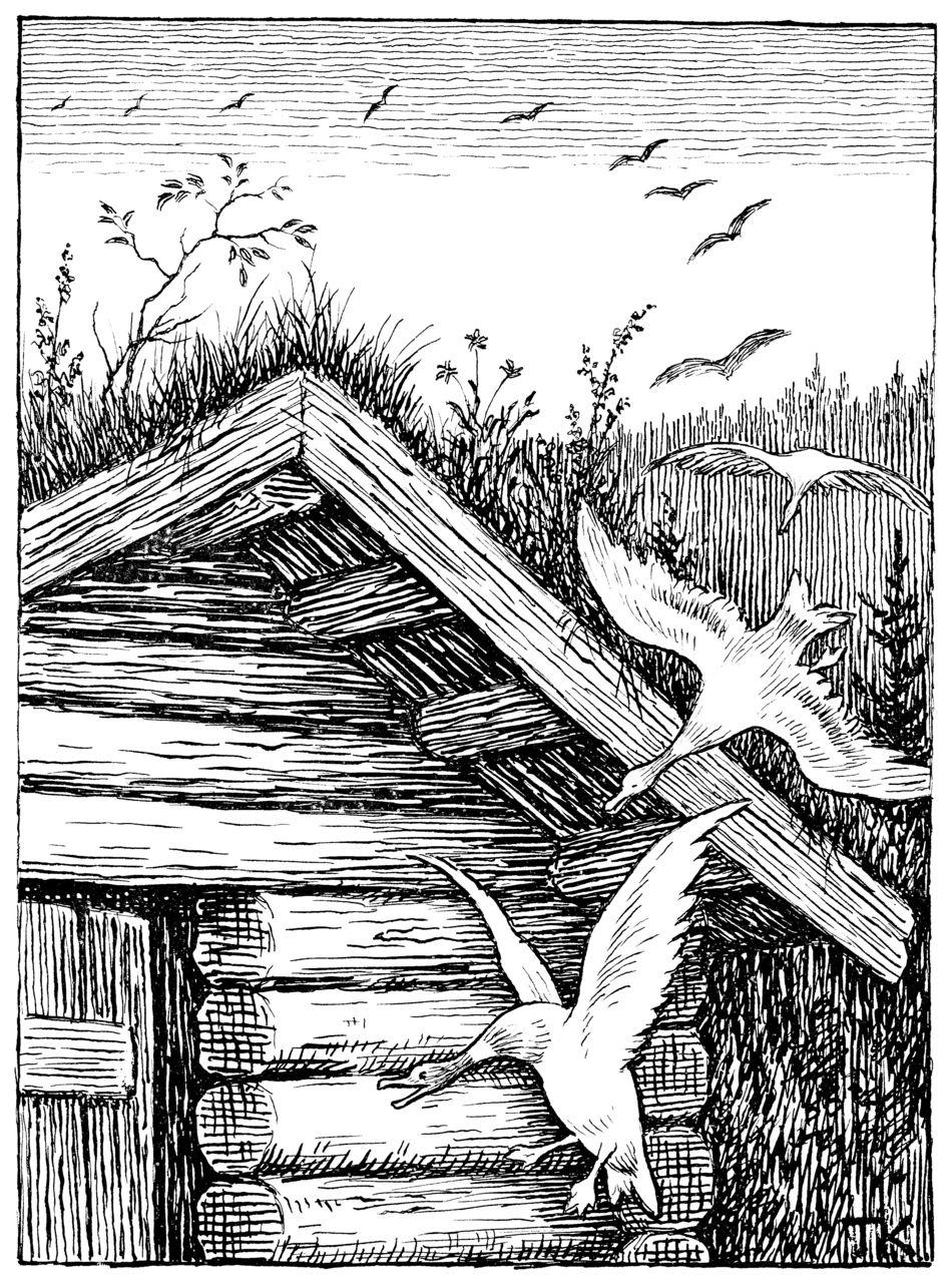 The twelve wild ducks (De tolv villender); art by Theodor Kittelsen