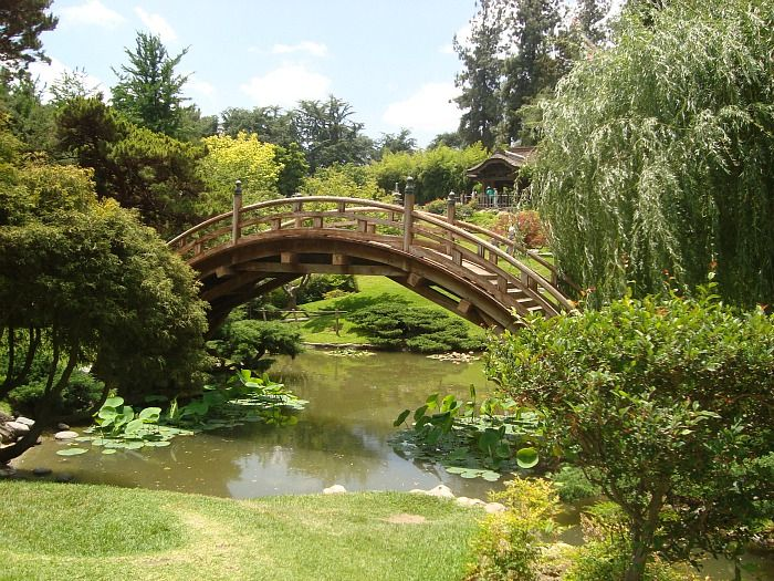 Huntington Botanical Gardens In Pasadena, California