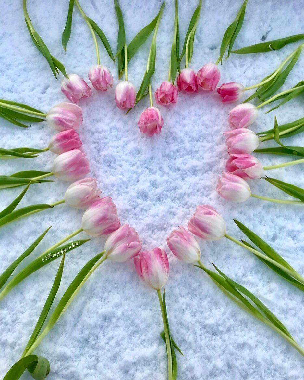 Pin von Debby Zamany auf Heart of the matter!!! | Pinterest ...