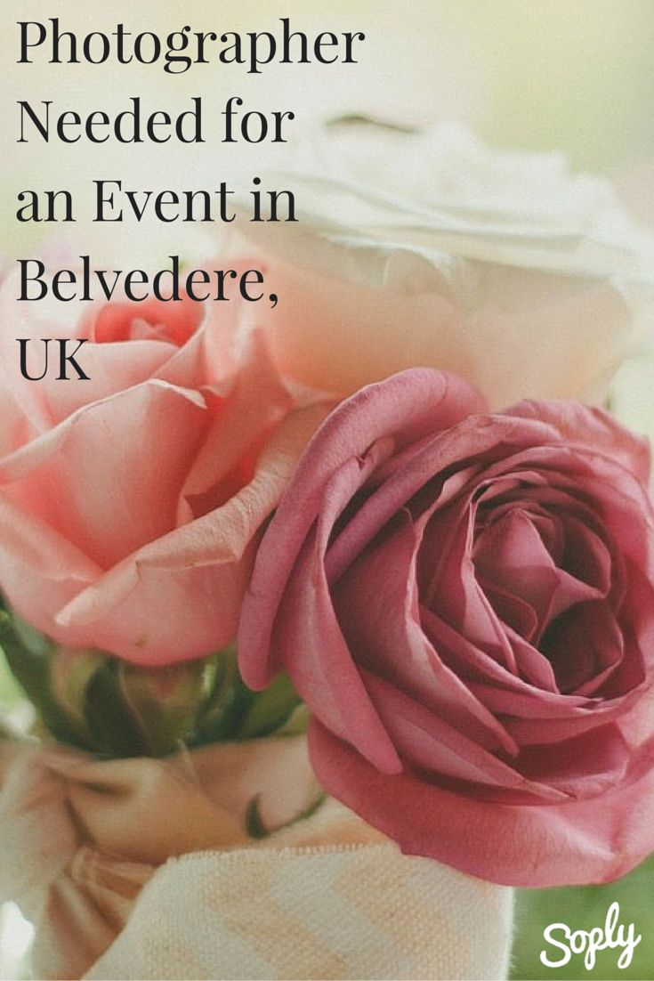 Event Photographer Needed For An Anniversary Party In Belvedere Uk