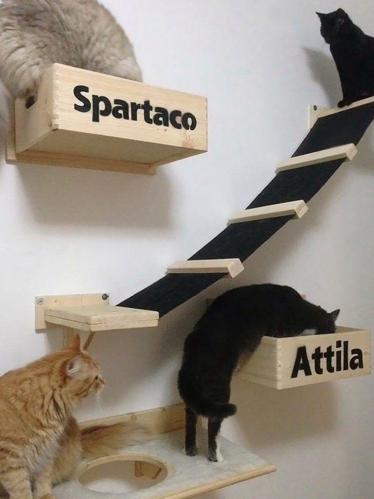 Cuccia Cane Grande Ikea nuovo! cuccia a muro in legno per gatti con incisioni e