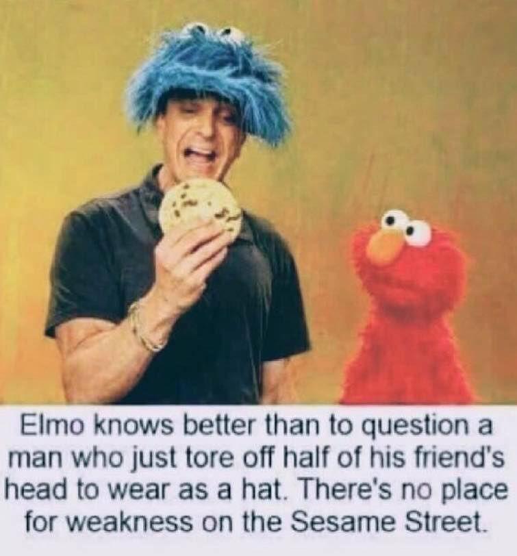 Lol Cookie Monster Elmo Check Out Elmos Face In 2020 Sesame Street Memes Dark Humour Memes Dark Memes