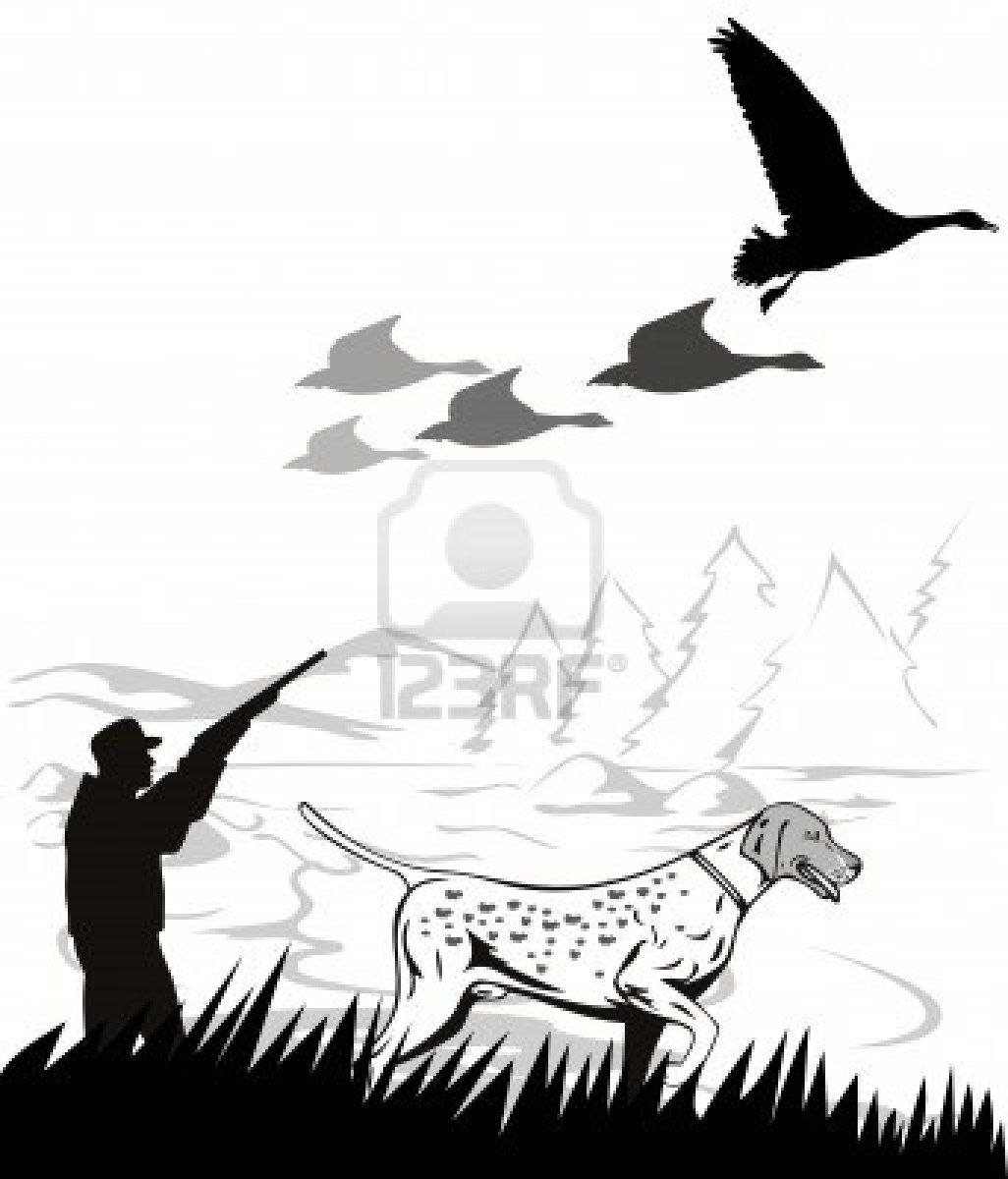 medium resolution of pheasant hunting clipart google search