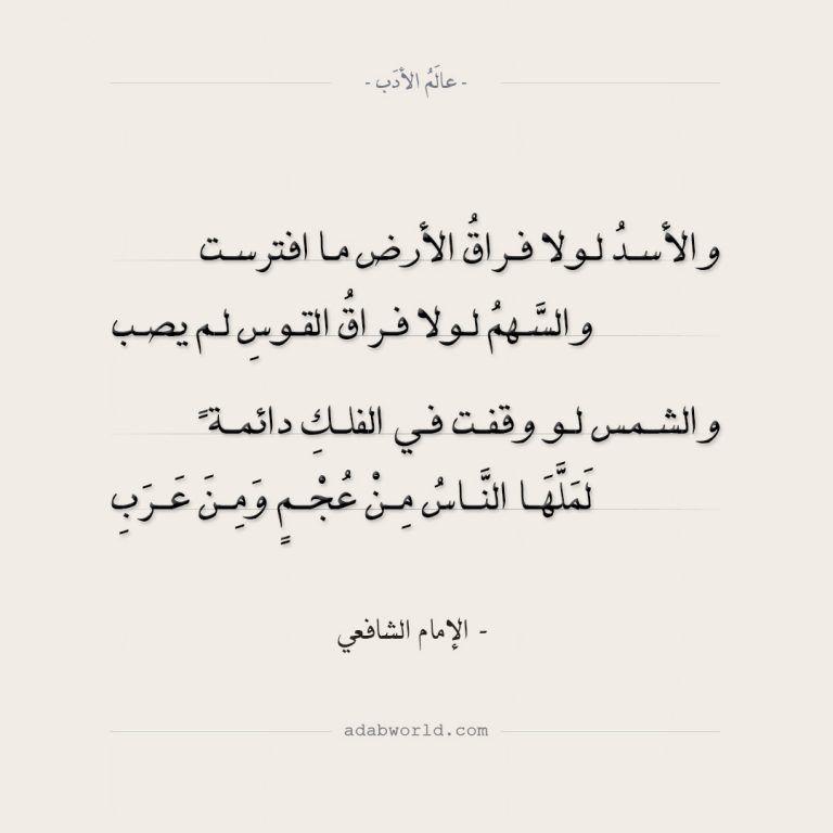 اقتباس من رواية الليالى البيضاء لـ فيودور دوستويفسكي عالم الأدب Arabic Quotes Quotes Math