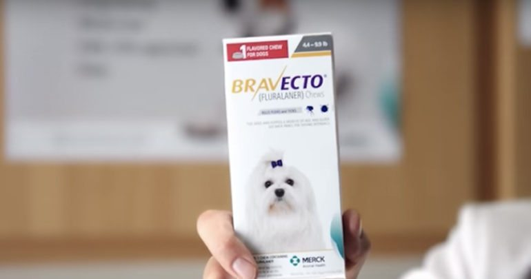 Bravecto Flea Medication Suspected in Numerous Dog Deaths