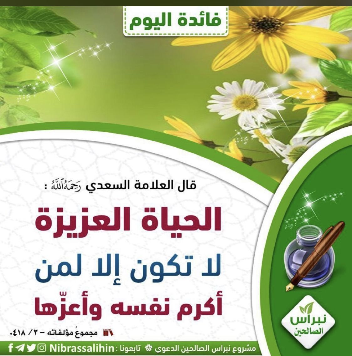 Pin By يحيى تركو On 0 صور أغاني أفلام Calligraphy Arabic Calligraphy