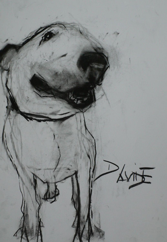 Charcoal bull terrier