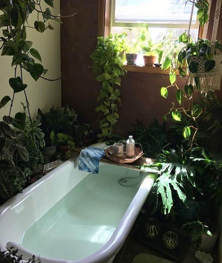 bathroom plants. Stunning Plant Wall Decoration For Your Bathroom  Fres Hoom inhale exhale bathroom decor and organization Pinterest
