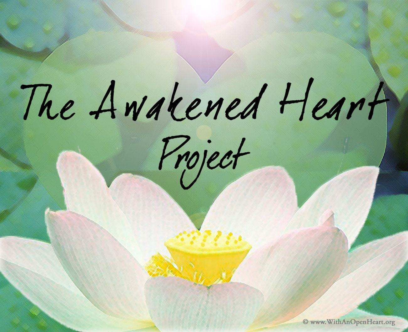 This post is part of the awakened heart project week 1 the story of lotus flower izmirmasajfo Choice Image