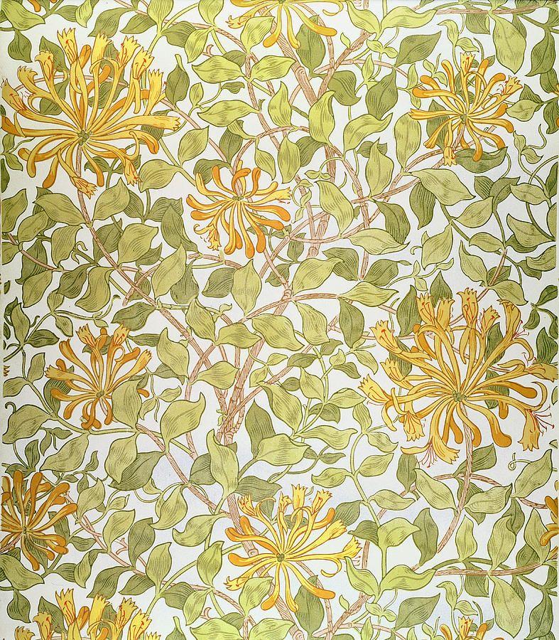 Honeysuckle Design William morris art, William morris