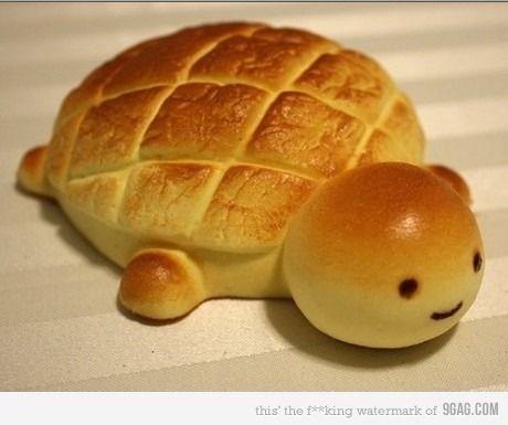 bread turtle
