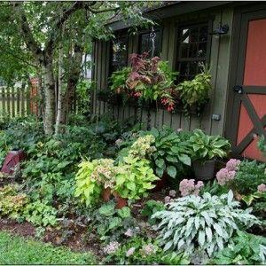 Landscaping Shade Garden Zone 4 - Google Search | Garden ... on cottage garden design, williamsburg garden design, hosta garden design, zone 4 flower beds design, zone 4 landscape design, zone 6 perennial beds, zone 4 roses, zone 4 flower gardens,