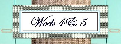 8 wks to getting organized: wk 4&5-foresee and avoid problems