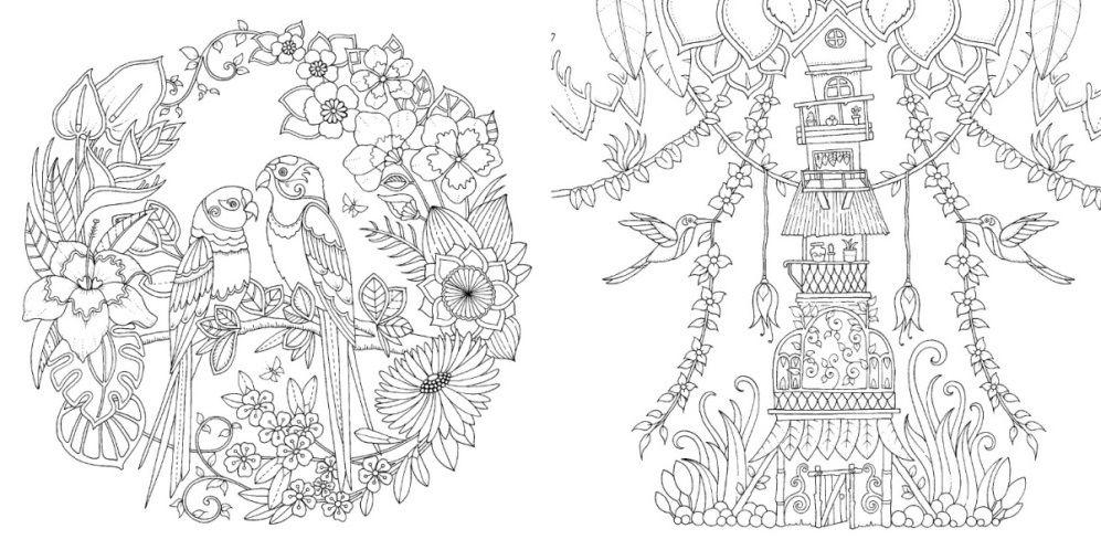 Selva Magica Johanna Basford Ilustracao 3