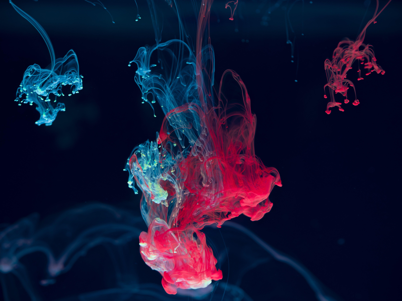 Ink Water Blending Paint Drops Red Blue 5k Wallpaper Hdwallpaper Desktop In 2020 Cool Backgrounds Hd Cool Backgrounds Abstract Wallpaper