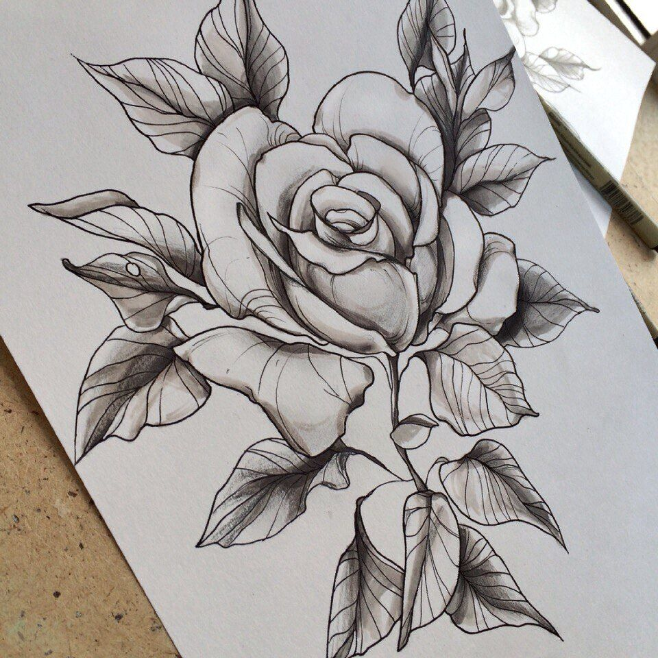Rose tattoo sketch by Family Ink | Family Ink Tattoo