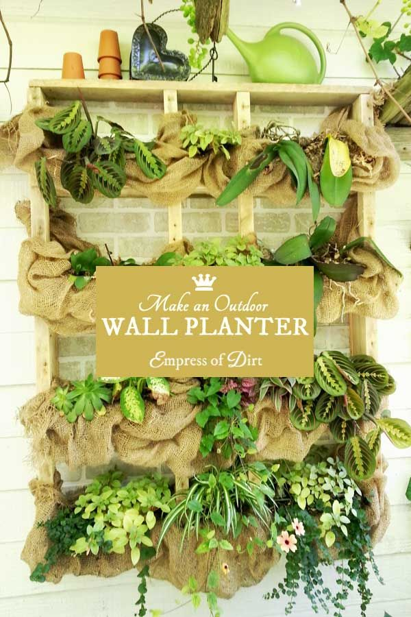 Vertical Gardening Idea Gallery | Plant shelves, Wall mounted ...