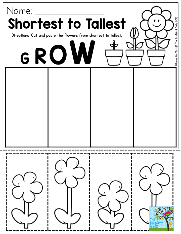 Shortest to Tallest- Perfect for a gardening unit in Preschool. Cut ...