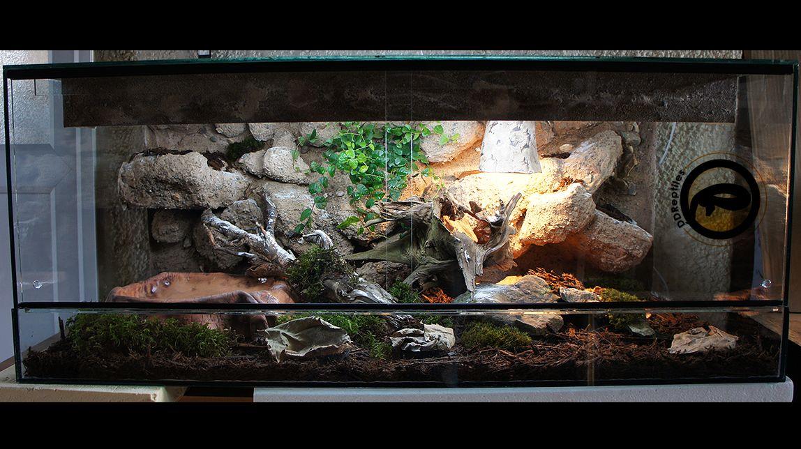 Desert Vivariums Snake Vivarium 1000x500x500mm Giant