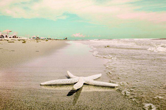 Beach Photography Sea Star Florida Atlantic Sea Shore Aquamarine