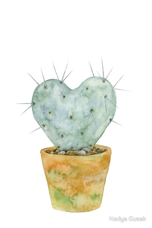 Watercolor Cactus Poster Opuntia Heart Cactus Paintings