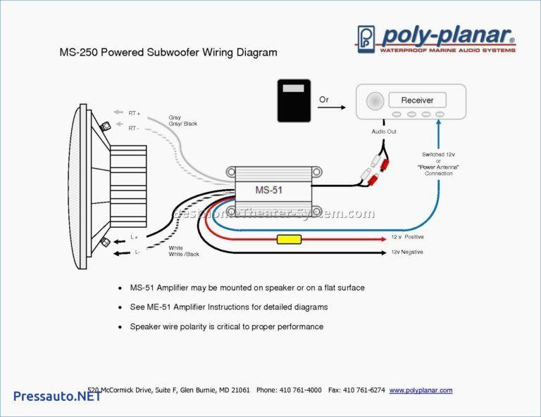 Polk Audio Powered Subwoofer Wiring   Online Wiring Diagram