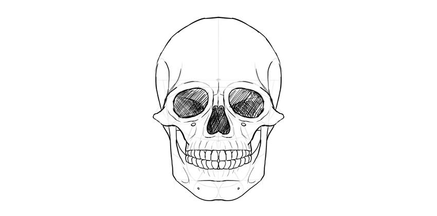 Human Skull Eyes Shaded Imagenes De Calavera Calaveras Calaveras Para Ninos