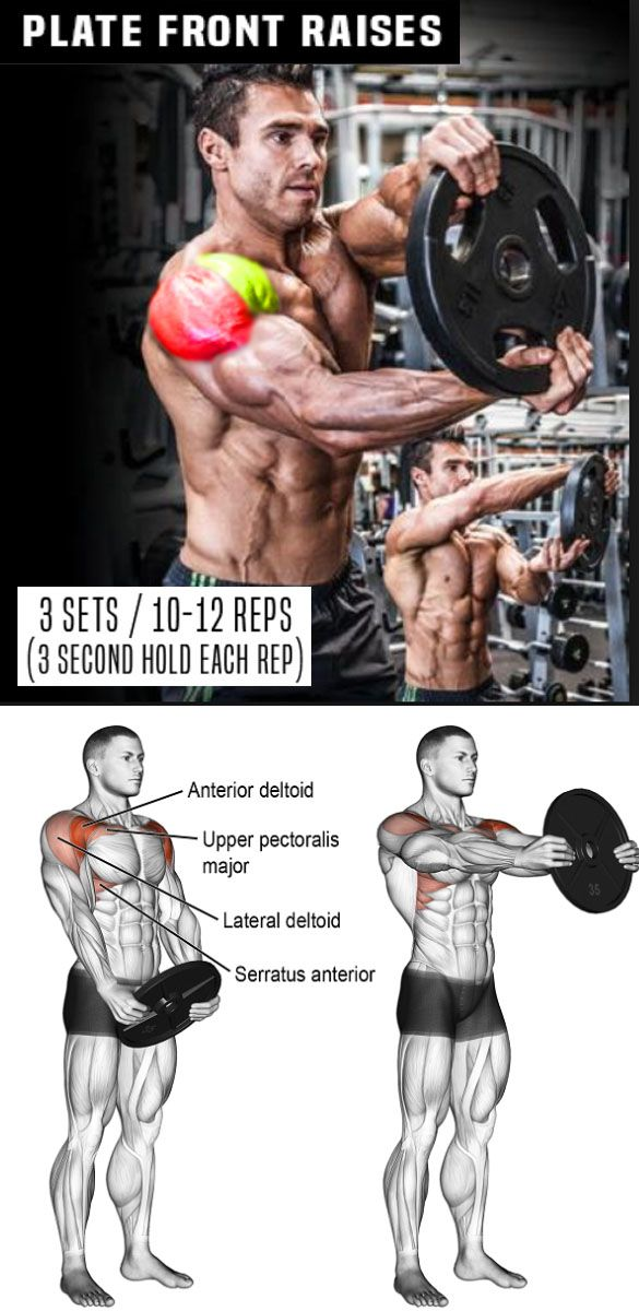 Weight Plate Front Raises Shoulder Workout Gym Workouts Bodybuilding Workouts