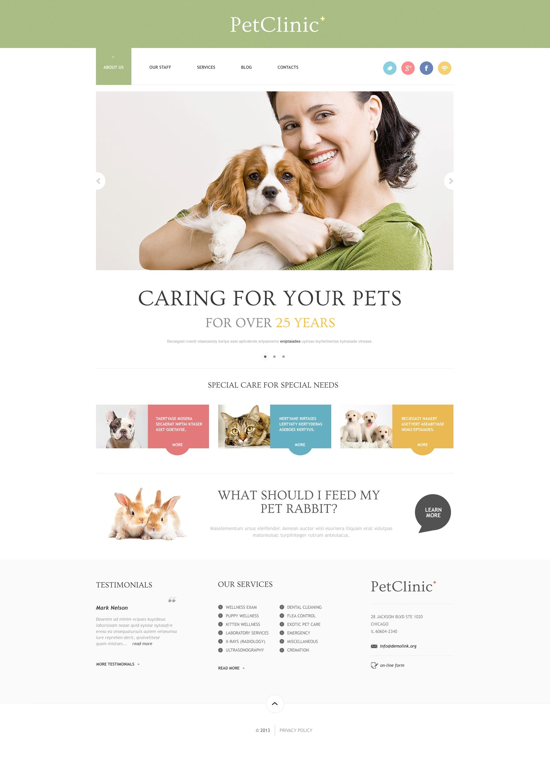 Website Design Template 47407 Center Veterinarian Pets Hospital Health Cat Dog Doctors Puppy Kitten Clinical Veterinary Tips Feed Medicine Staff Services Breed