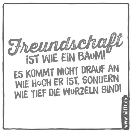 Photo of 12 quotes & sayings about friendship · Häfft.de