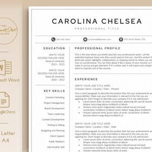 Professional Resume Template Clean Modern Resume Template 1 2 Page Resume Template Instant Download Resume Cv Template For Word In 2021 Resume Template Resume Template Professional Cv Template