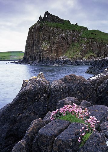 Thrift, Duntulm Castle by Richard Childs, via Flickr