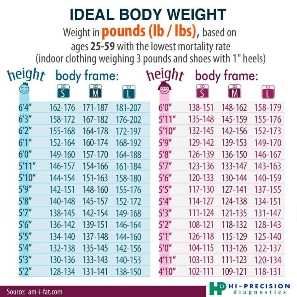 Pin on healthy weight for women