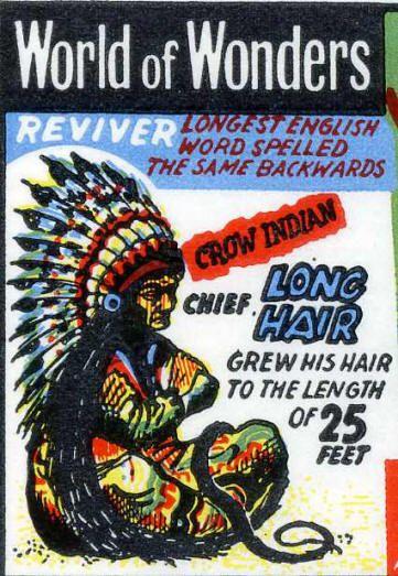 Chief Long Hair