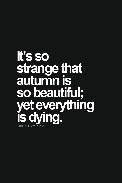 TheMotivatedType On Etsy New Beginning Pinterest Life Quotes Cool Quotes About Dying