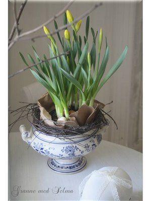 paper, budding daffodils || Granne med Selma - Blogg: Lantlig påsk